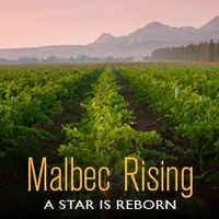 Malbec Rising: A Star is Reborn
